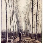 poplar_trees