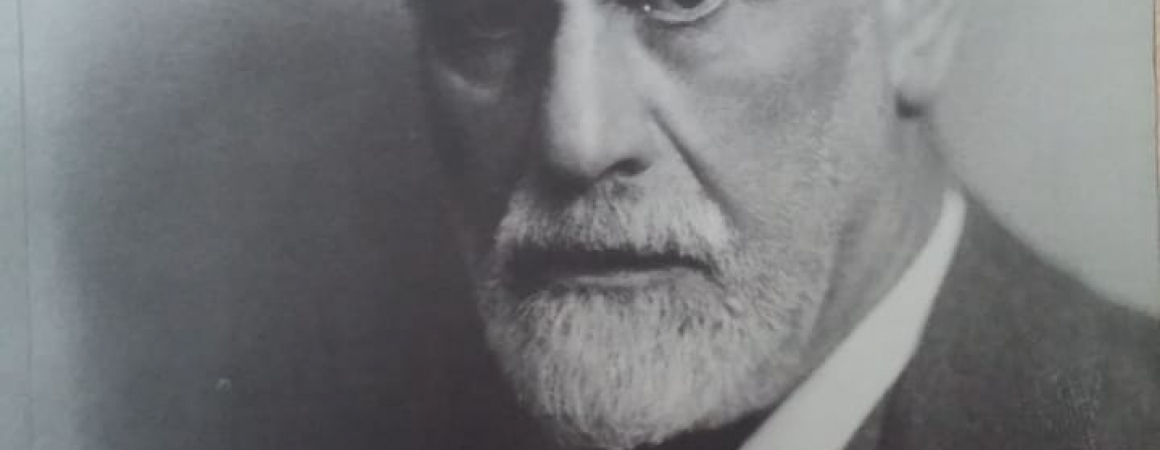 Sigmund Freud por Roudinesco